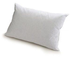 Vinyl Waterproof Covered Pillows