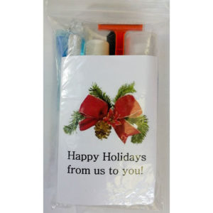 New! Christmas Holiday Standard Hygiene Kit